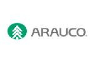 Arauco